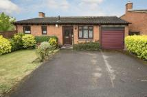 Detached Bungalow in Allonby Close...