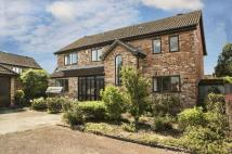 5 bedroom Detached property in Sibley Park Road, Earley...