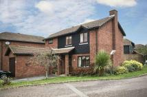 4 bed Detached home for sale in Ridlington Close...
