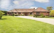 Detached Bungalow for sale in Sussex Lane Spencers...