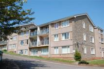 Flat to rent in Westward Gardens...