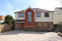 2 bed Detached home for sale in Pashley Road, Eastbourne...
