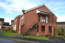 1 bed Studio flat to rent in Chapel River Close...