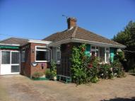 2 bed Detached Bungalow to rent in Monxton Road, Grateley...