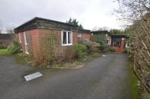 Detached Bungalow for sale in Chestnut Avenue, Andover...