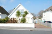 Detached Bungalow to rent in Whitecliff, Poole