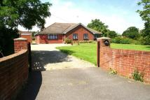 3 bed Bungalow for sale in Clay Lane, St. Osyth...
