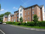Flat to rent in Lawnhurst Ave, Baguley...