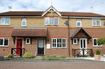 Terraced property to rent in LAVENDER CLOSE...