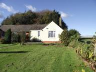 Bungalow to rent in Higher Farm Bungalows...