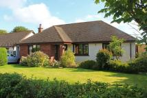 The Bowling Green Bungalow for sale
