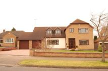 Detached property in Ringers Spinney, Oadby...