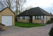Detached Bungalow for sale in Pinfold Close, Thurlby...