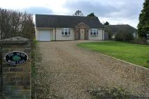 Detached Bungalow in Wood Lane, Thurlby...