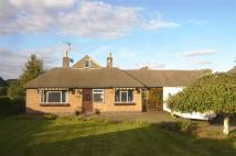3 bed Detached Bungalow for sale in Repton Road, Hartshorne...