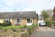 2 bed Semi-Detached Bungalow in Hall Lane, Packington...