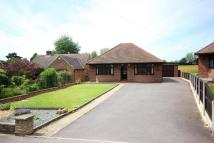 Green Lane Detached Bungalow for sale