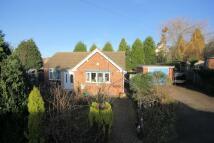 Detached Bungalow for sale in Model Farm Close...