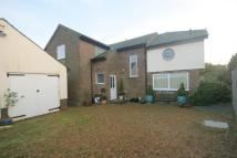 Detached house to rent in North foreland...