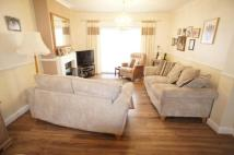 semi detached house to rent in William Barefoot Drive...