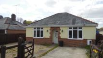 Detached house in Wootton Road, Tiptoe...
