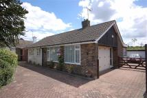The Downs Detached Bungalow for sale