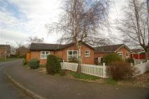 Detached Bungalow for sale in Daleside, Cotgrave