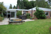 Detached Bungalow to rent in Glebe Lane...