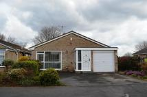 Detached Bungalow to rent in Wichnor Close, Clifton...