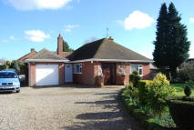 Detached Bungalow for sale in The Grove, Dereham, NR19