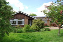 4 bedroom Detached Bungalow for sale in The Green, Gressenhall...
