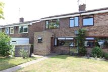 4 bedroom semi detached house in The Grove, Linton...
