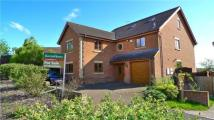 5 bedroom Detached home in Mustards Gapp, Haverhill...