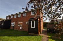 3 bedroom semi detached house to rent in Long Horse Croft...