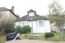 Roughdown Avenue Detached Bungalow to rent
