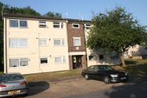 Flat to rent in Yeomans Ride, Grove Hill...