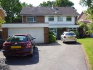 4 bedroom Detached home to rent in White House Green...