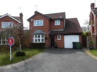 4 bedroom Detached house to rent in Timberlake Close...