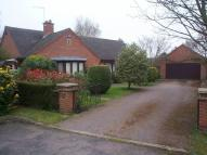 Bungalow for sale in Lodge Gardens, Oakham...