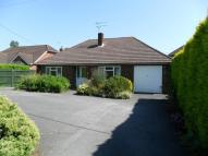 Detached Bungalow for sale in Lindford,  GU35