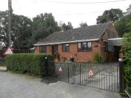 2 bed Detached Bungalow for sale in Somerset Avenue, Bordon...