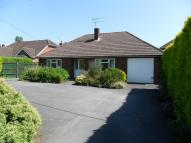 Liphook Road Detached Bungalow to rent