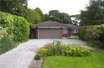 3 bed Detached Bungalow in Freshfield Road...