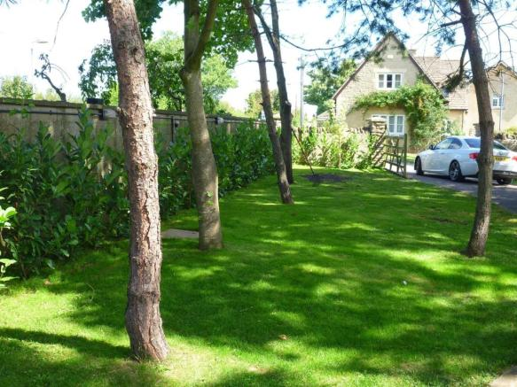 Tree Line Entrance