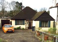 Detached Bungalow to rent in Coulsdon Road, Coulsdon...