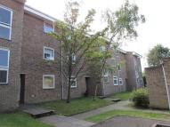 Flat to rent in SANDOWN DRIVE...
