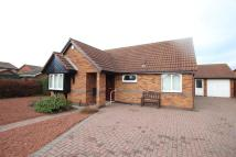 Detached Bungalow for sale in Saltscar, Redcar...