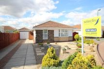 3 bed Detached Bungalow in Vickers Close...