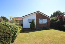 Detached Bungalow for sale in Longbeck Lane...