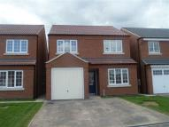 4 bed new property in Polly Lees...
